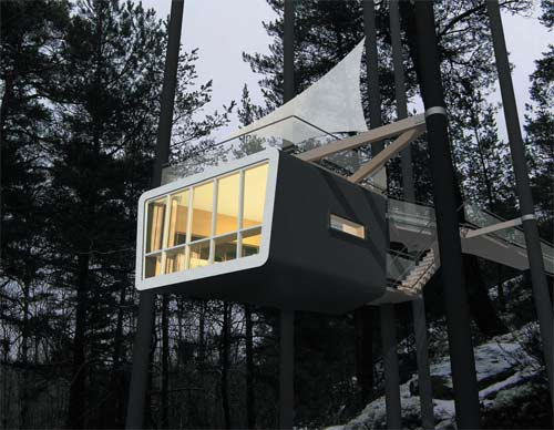 Tree House Hotel - The Cabin