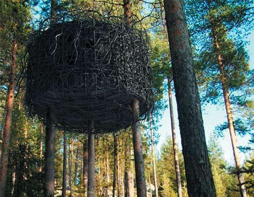 Tree House Hotel - Birds Nest