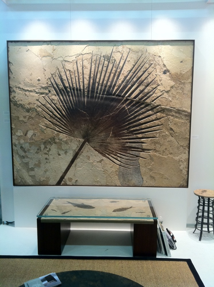 green river stone and john strauss coffee table with fossil