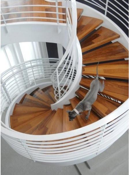 Villa Nirvana spiral staircase by Brown Davis
