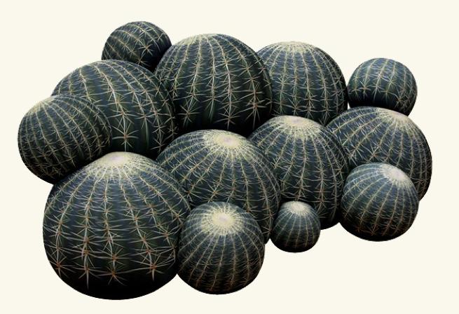 Cactus Sofa