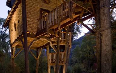 mountain-treehouse-0676