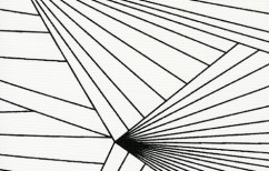 Erica Wakerly Black white fan fabric wall print design