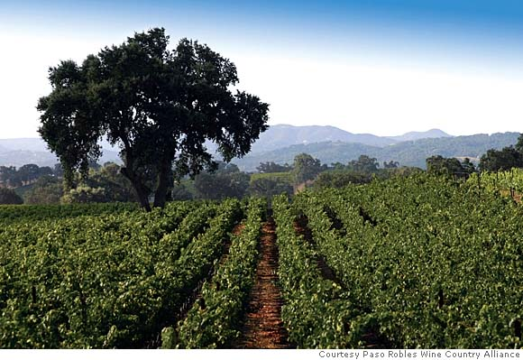 Paso-Robles-wine-country