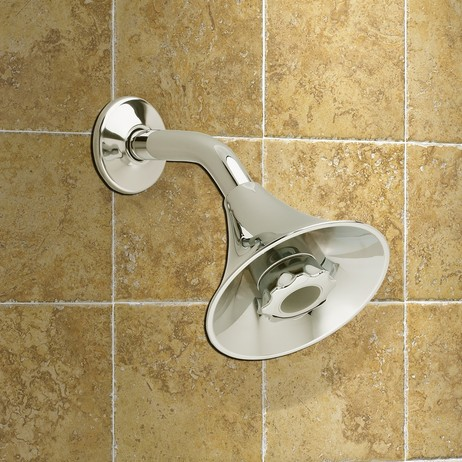 FloWise Transitional Water Saving Showerhead by American Standard