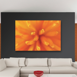 Floral Collection by UrbanCanvasArt.com