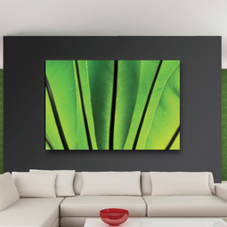 Nature Collection by UrbanCanvasArt.com