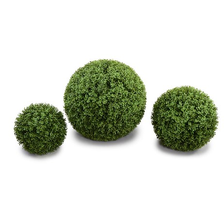 boxwood Ball by New Growth Designs