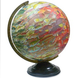 school of fish globe by ImagineNations