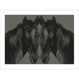 Horse by Paste + Jason Laurits
