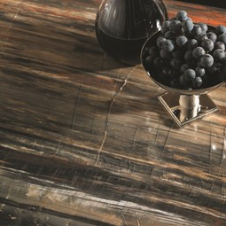 Petrified Wood 180fx® by Formica Corporation