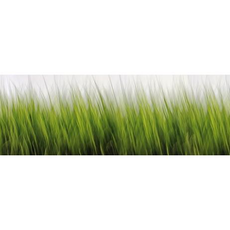 Grass by wallunica - your tailored wallpaper