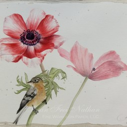 anemones and bird by gertrude hamilton by Susan Frei Nathan Fine Works on Paper
