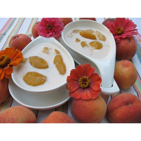 Cold Peach Soup by Vivian Reiss Living