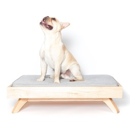 Joey Low Back Bed by PUP & KIT