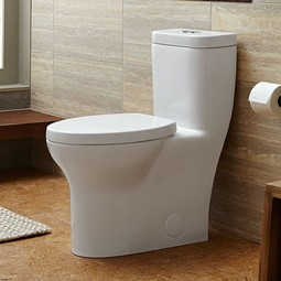 Lyndon One Piece Elongated Dual Flush Toilet by DXV