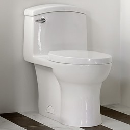 Roycroft One-Piece Elongated Toilet by DXV
