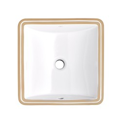 "Webster Under Counter 16"" by 16"" Bathroom Sink by DXV"