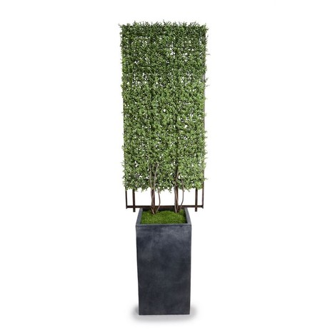 Boxwood Trellis in Column Pot by New Growth Designs