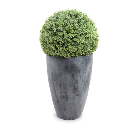"22"" Boxwood Ball In Round Tapered Pot by New Growth Designs"