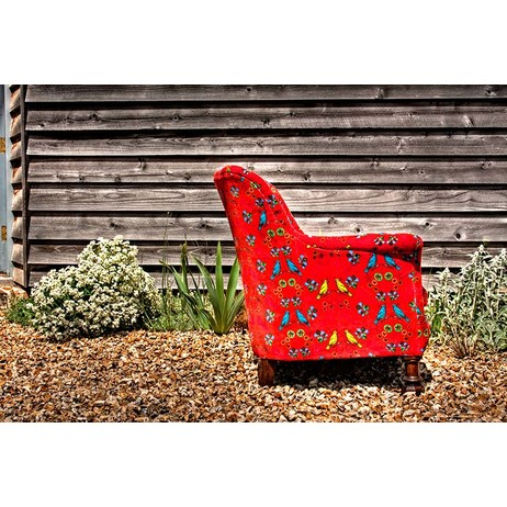 Red Birds Chair by Corita Rose