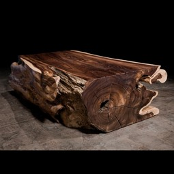 Rosewood Trunk by Hudson Furniture
